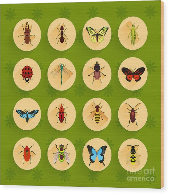Insects Round Button Flat Icons Set Wood Print