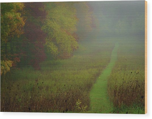 Into The Fog Wood Print