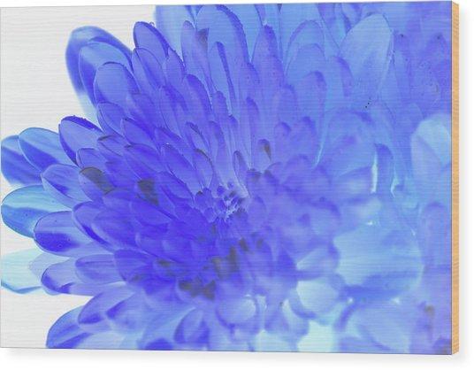 Inverted Flower Wood Print