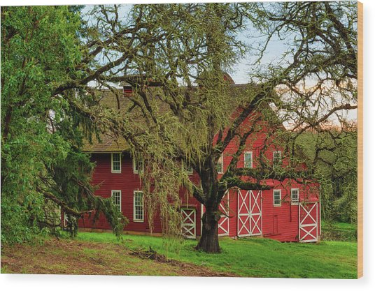 Inviting Country Scene Wood Print