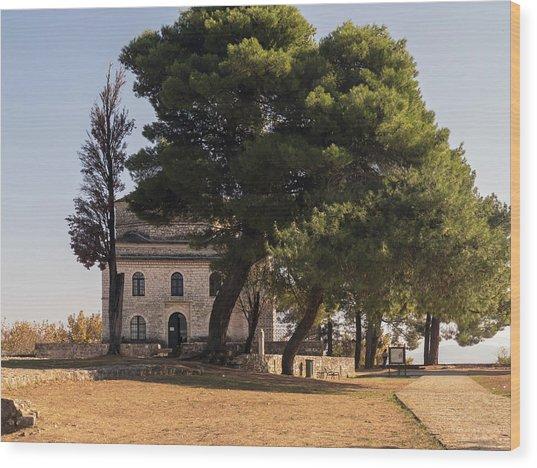 Ioannina - Fethiye Mosque Wood Print