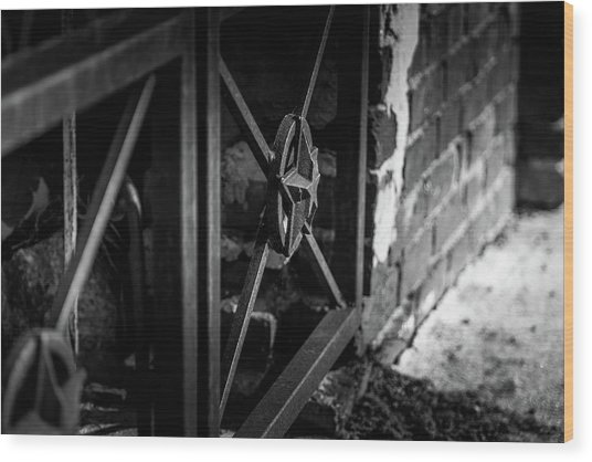Iron Gate In Bw Wood Print
