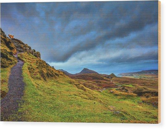 Isle Of Skye Landscape #i1 Wood Print