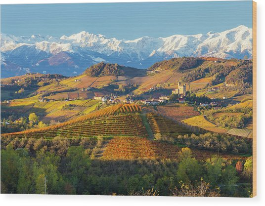Italy, Piedmont, Langhe, Cuneo Wood Print by Peter Adams