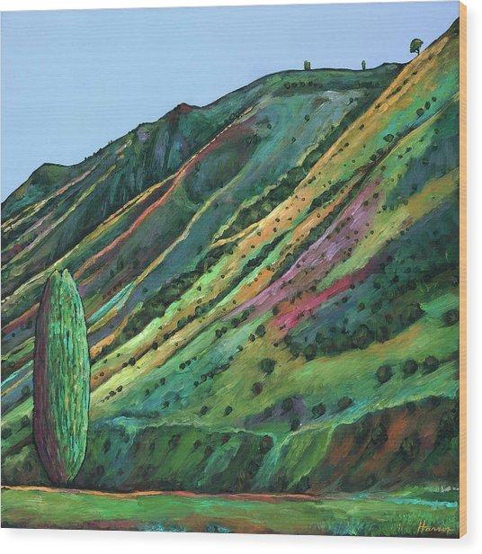 Jackson Hole Wood Print