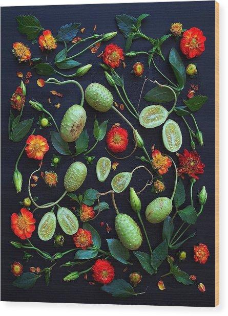 Jamaican Burr Cucumbers Wood Print