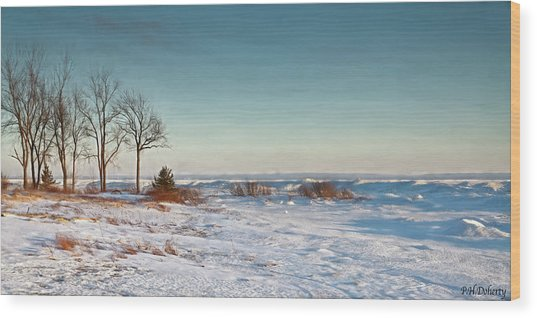 January Shoreline On Erie Wood Print
