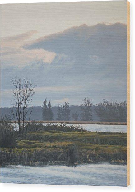 January Skies Wood Print
