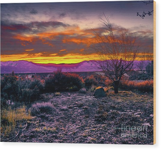 January Sunrise Wood Print