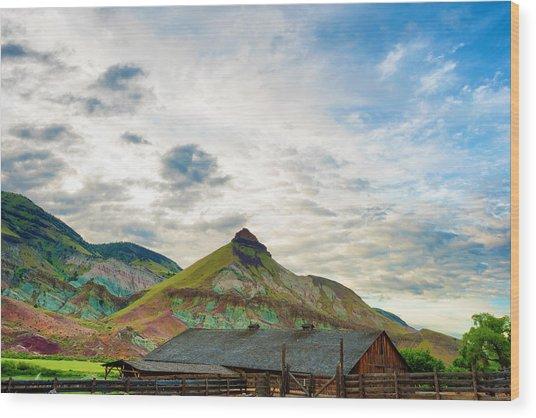 John Day Sheep Rock Wood Print
