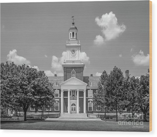 Johns Hopkins Gilman Hall Wood Print