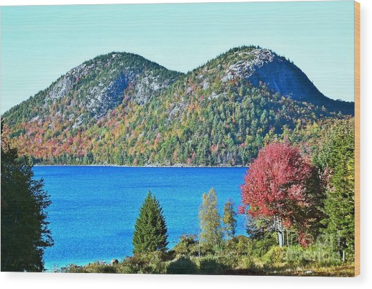 Wood Print featuring the photograph Jordan Pond Bubbles by Patti Whitten