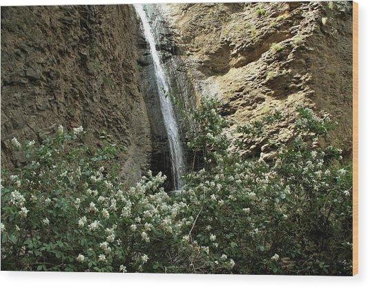 Jump Creek Falls Canyon Wood Print