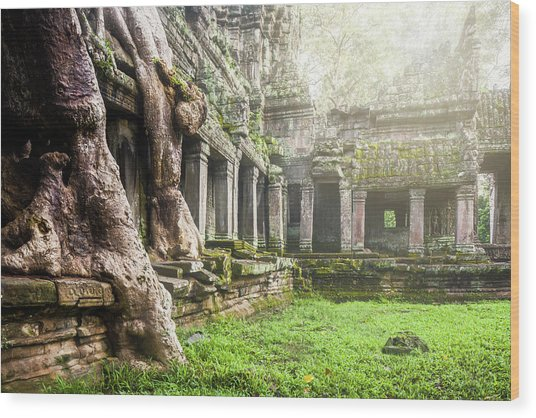 Wood Print featuring the photograph Jungle Temple 1 by Nicole Young