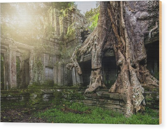 Wood Print featuring the photograph Jungle Temple 2 by Nicole Young