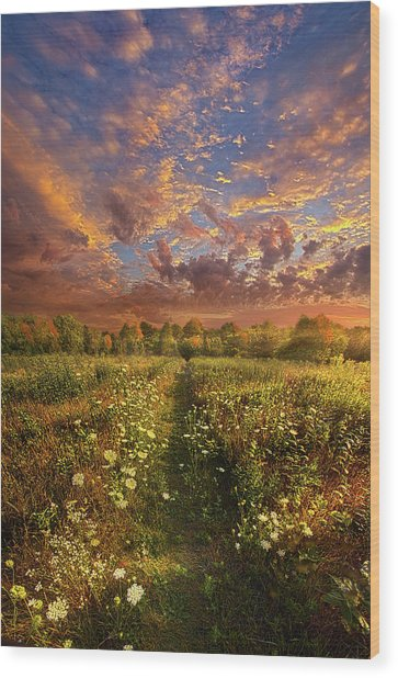 Wood Print featuring the photograph Just Follow Your Feet by Phil Koch