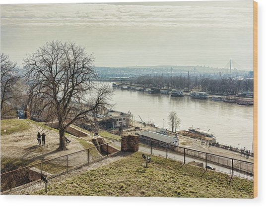 Kalemegdan Park Fortress In Belgrade Wood Print