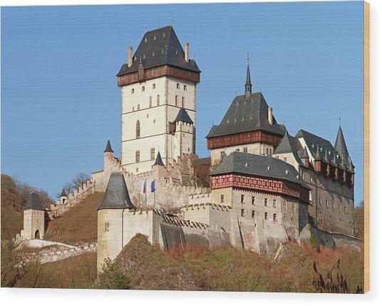 Karlstejn Castle, Czech Republic Wood Print by Rusm