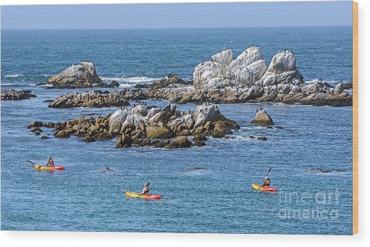Kayakers Experience Bird Rock At Pacific Grove Wood Print