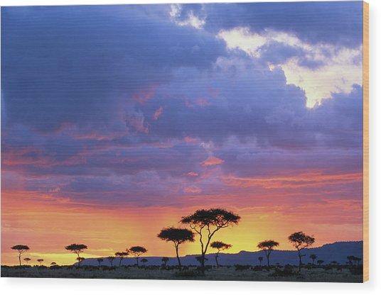 Kenya, Masai Mara Game Reserve, Storm Wood Print
