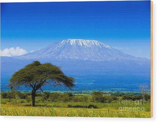 Kilimanjaro On African Savannah Wood Print