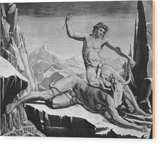 Killing The Minotaur Wood Print by Hulton Archive