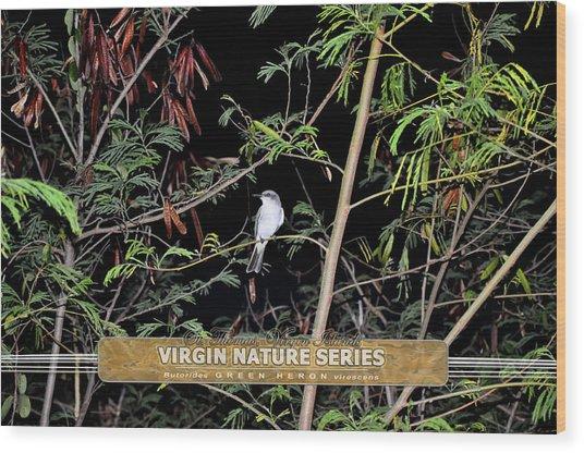 Kingbird In Casha - Virgin Nature Series Wood Print