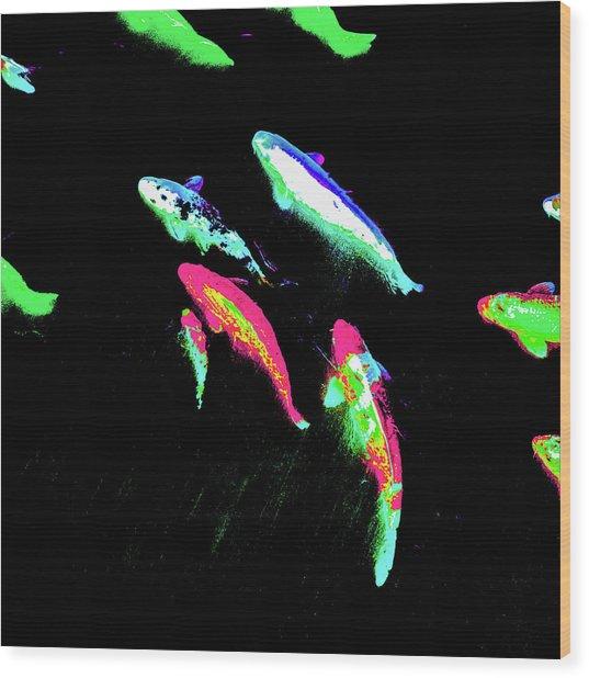 Koicarpscape 2 Wood Print