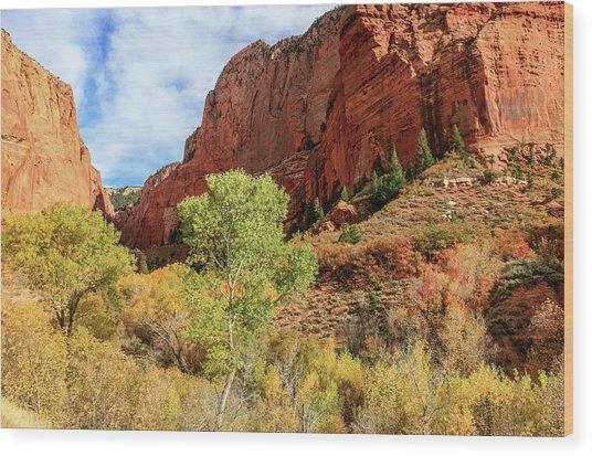 Kolob Canyon 1, Zion National Park Wood Print