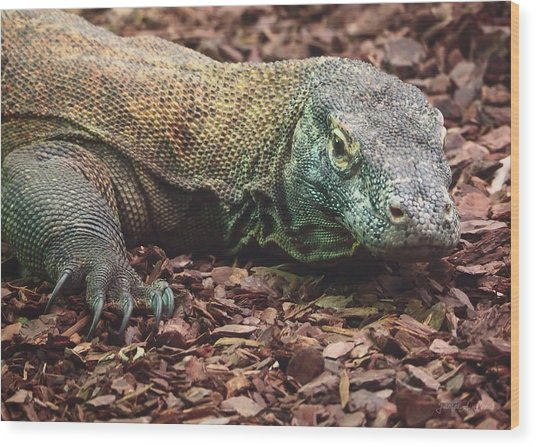 Komodo - Supporting World Wide Fund For Nature Wood Print