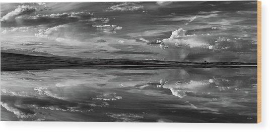 Lake Abert 11 Black And White Wood Print by Leland D Howard