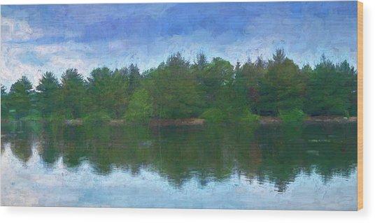Lake And Trees Wood Print