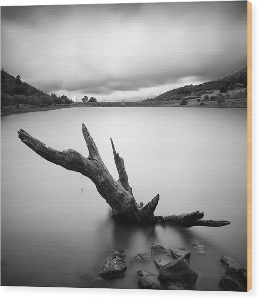 Lake Cuyamaca Stump And Clouds Wood Print by William Dunigan