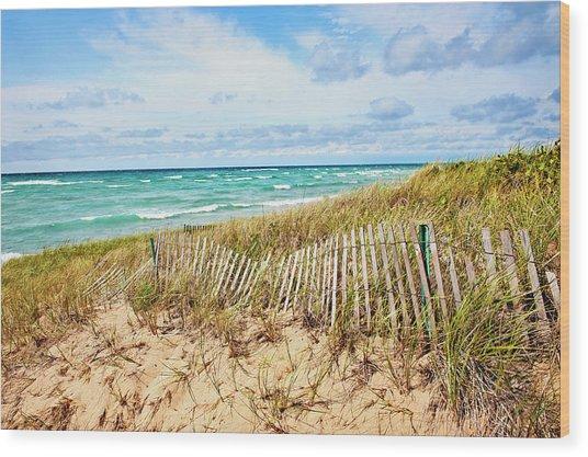 Lake Michigan Beachcombing Wood Print
