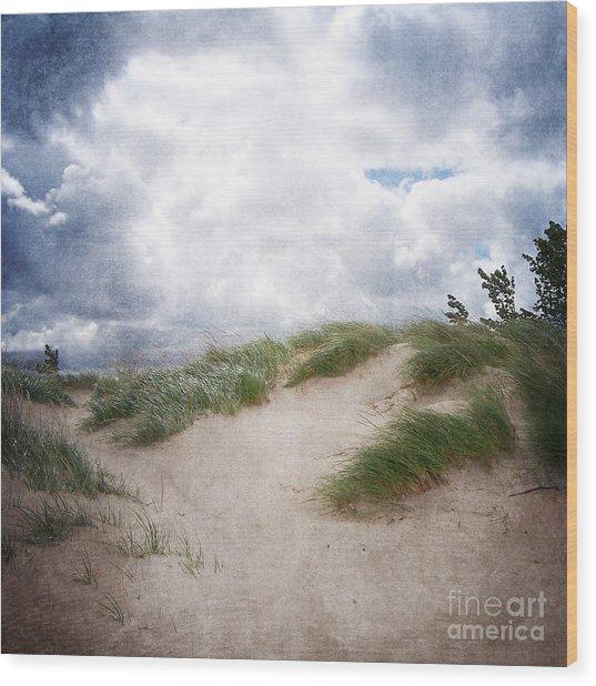 Lake Michigan Sand Dunes Wood Print