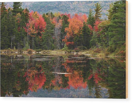 Lake Perfectly Reflects Powerful Fall Wood Print