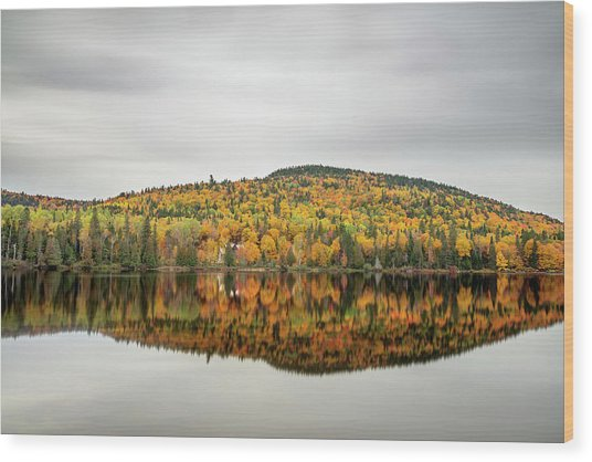 Wood Print featuring the photograph Lake Shore House In Autumn by Pierre Leclerc Photography