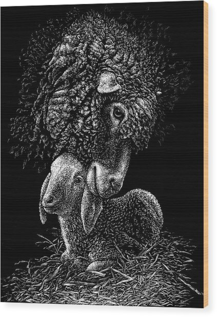 Wood Print featuring the drawing Lamb by Clint Hansen