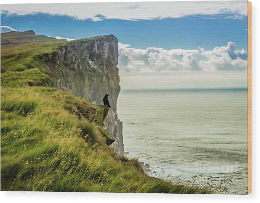 Latrabjarg Cliffs, Iceland Wood Print