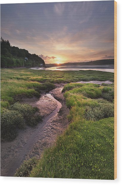 Wood Print featuring the photograph Laugharne Estuary At Sunrise by Elliott Coleman