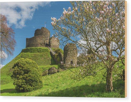 Launceston Castle, Cornwall Wood Print by David Ross