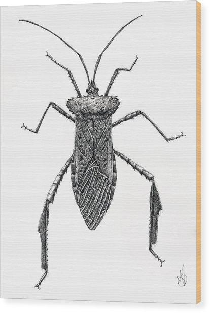 Leaf Footed Bug Wood Print