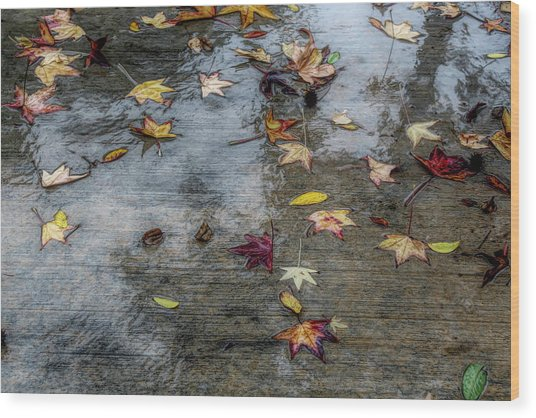 Leaves In The Rain Wood Print