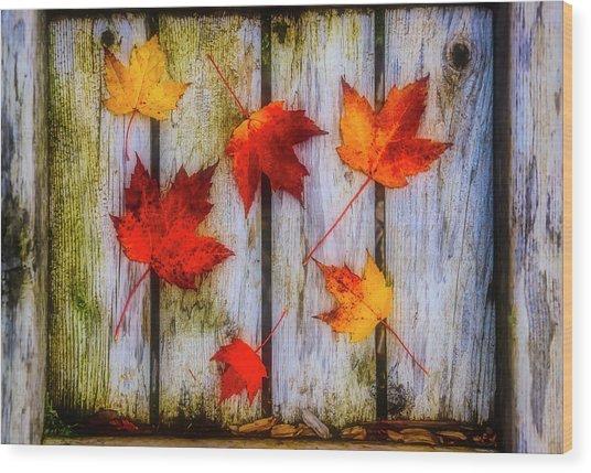 Leaves On A Wooden Walkway Wood Print