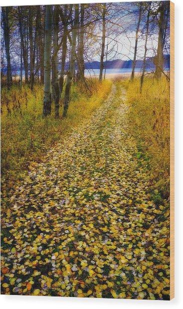 Leaves On Trail Wood Print