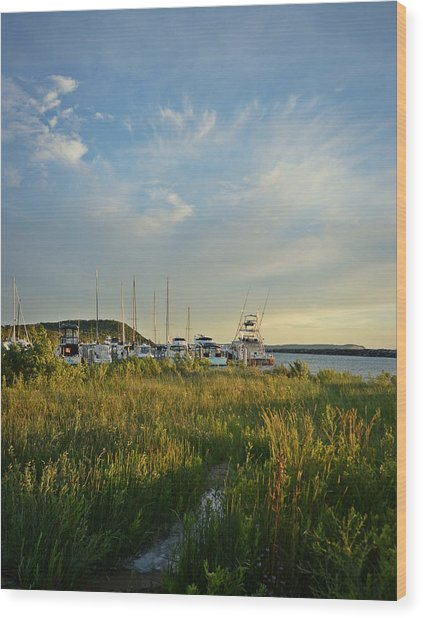 Leland Harbor At Sunset Wood Print