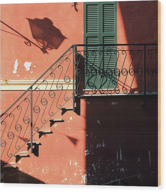 Wood Print featuring the photograph Light In Shadow by Nicole Young