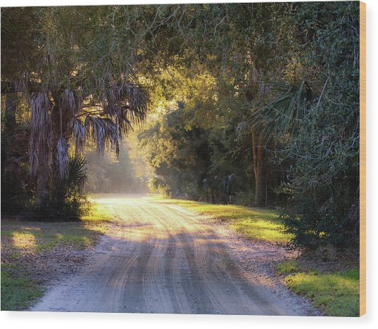 Light, Shadows And An Old Dirt Road Wood Print
