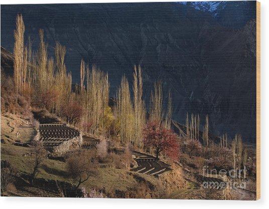 Light Slide Wood Print