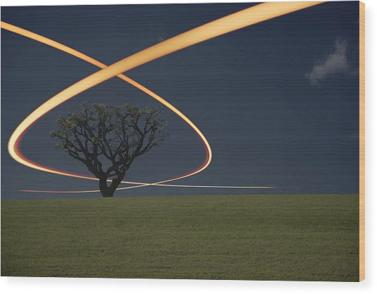 Light Trails Around Tree Wood Print by Paul Taylor